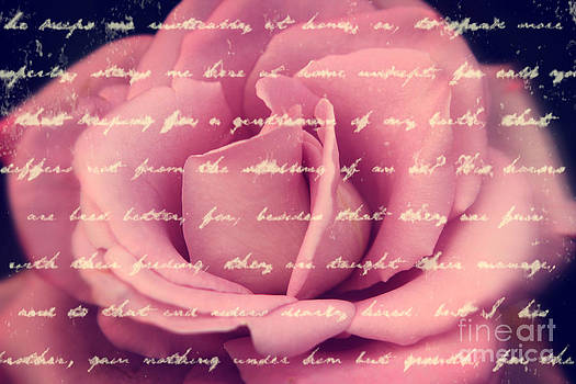 Beverly Claire Kaiya - Lovely Pink Rose with Vintage Handwriting