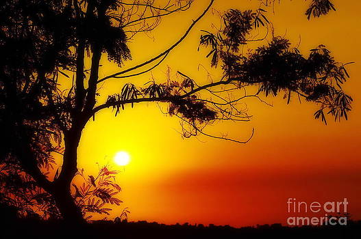 Lovely Sunset by George Paris