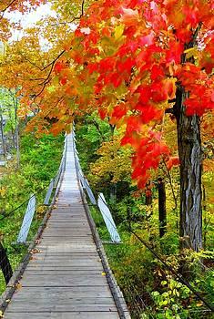 Lover's Leap Swinging Bridge by Carli Tolmie