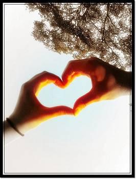 Loving Hands by Alicia Diel