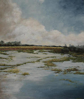 Low Country by Katrina Nixon