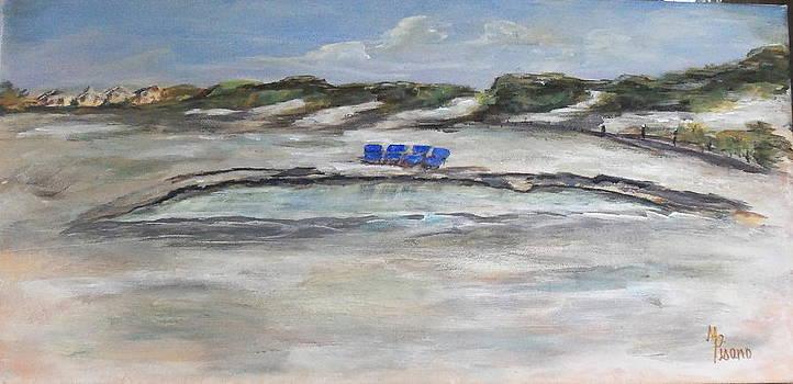 Low Tide at Mayflower Beach by Maureen Pisano