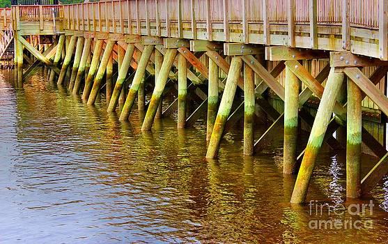 Low Tide by Judy Palkimas
