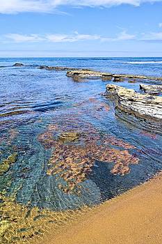 Jane Girardot - Low Tide Sunset Cliffs