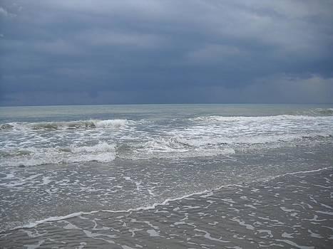 Low Tide by Vennie Deas Moore