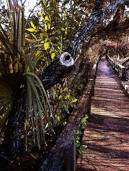 Lowcountry Bridge by Daniel Bonnell