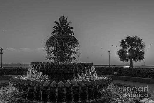 Dale Powell - Lowcountry Pineapple
