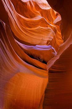 Ralph Nordstrom - Lower Antelope Canyon 2 2008