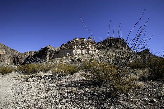 Alan Roberts - Lower Burro Mesa Pour Trailhead