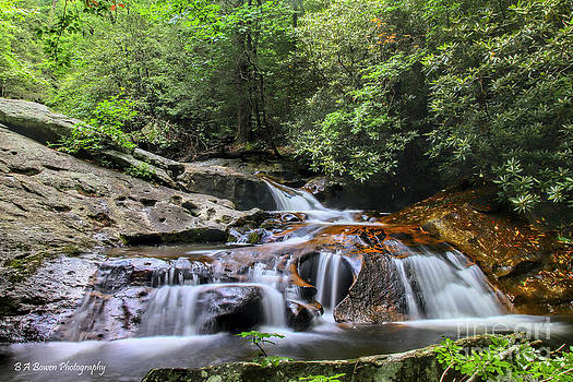 Barbara Bowen - Lower Falls at Mill Creek