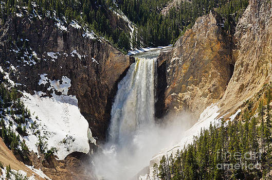 Lower Falls of the Yellowstone by Sue Smith