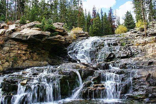 Lower Provo Falls by Gene Praag