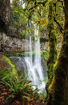 Lower South Falls by Brian Bonham