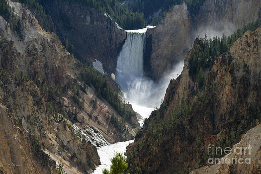 Lower Yellowstone Falls 01 by E B Schmidt