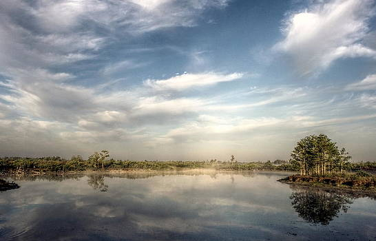 Howard Markel - Loxahatchee Morning