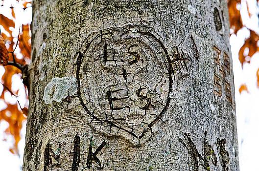 Paul Mashburn - LS Loves ES
