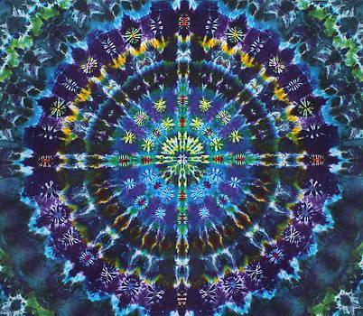 Lucid Dream by Courtenay Pollock