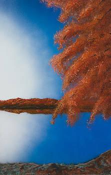 Luck's Fall by Tyrone Webb