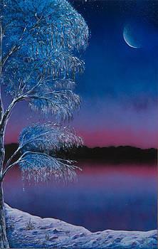 Luck's Winter by Tyrone Webb
