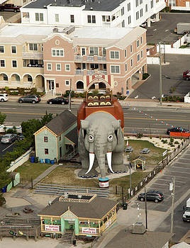 Lucy The Elephant by George Miller