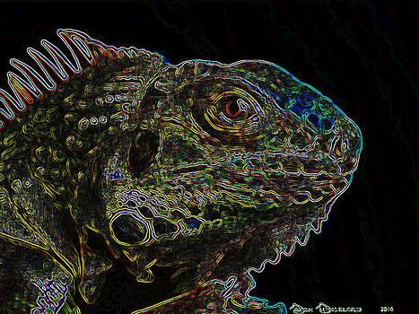 Luminous Dragon by Sarah Sutherland