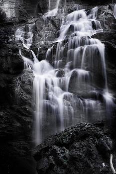 Luminous Waters by Janie Johnson