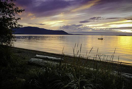 Lummi Island  by Blanca Braun
