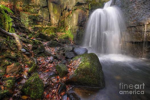 Yhun Suarez - Lumsdale Falls 2.0