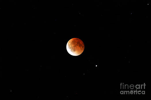 Lunar Eclipse by E B Schmidt