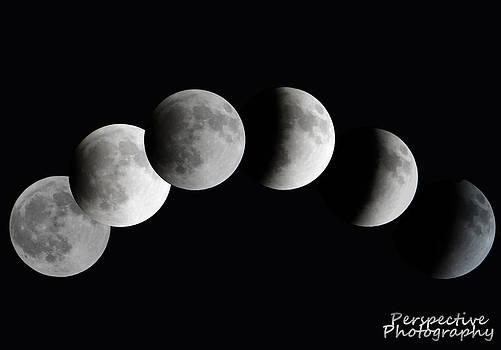 Lunar Eclipse by Jamie Johnson