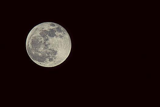 Lunar Orange by Melanie Lankford Photography