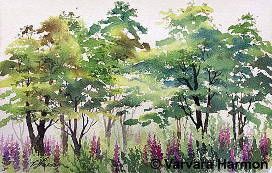 Lupines in Tree Shadow by Varvara Harmon