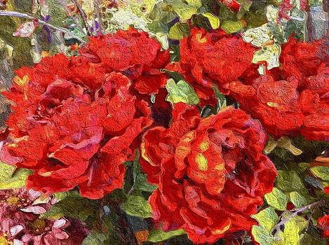Luscious Red Roses by Lyn Pacific