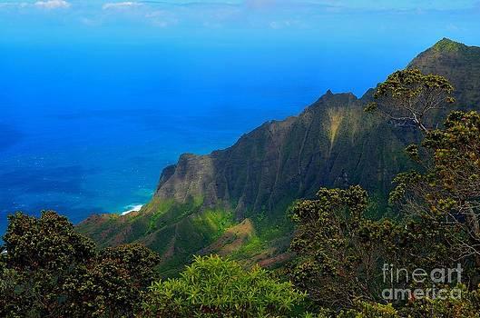 Lush Kauai by Greg Cross
