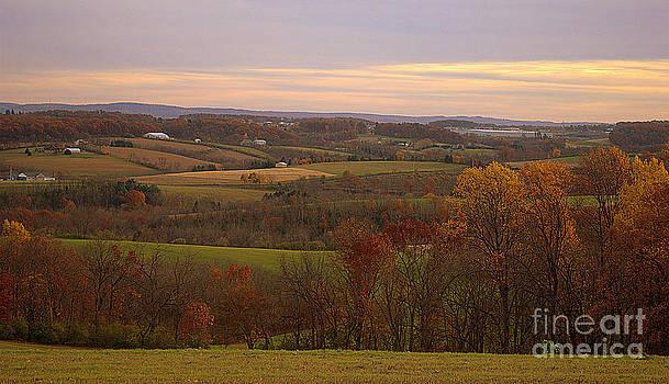 Lynn Valley by M Hess