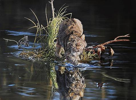 Lynx and Dragonfly by Julian Wheat