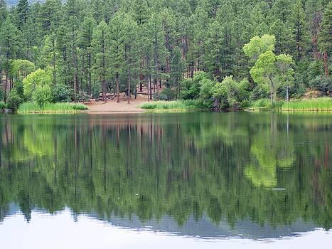 Lynx Lake Reflection by Kasie Morgan