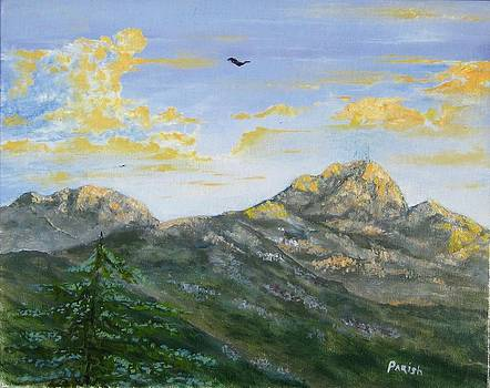 Lyons Peak at Sunset by Paintings by Parish