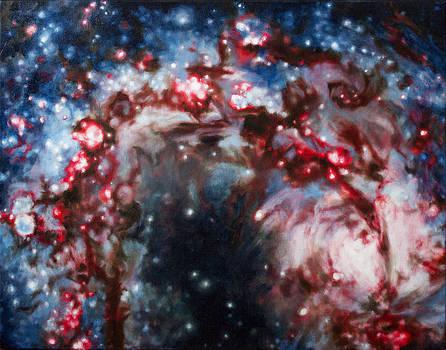 M101 The Pinwheel Galaxy by Theresa Hentz