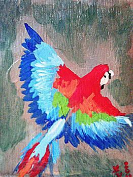 Macaw in flight by Loretta Nash