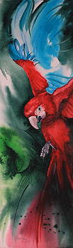 Macaw Magnificence by Kitty Harvill
