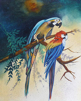 Macaws by Reta Haube