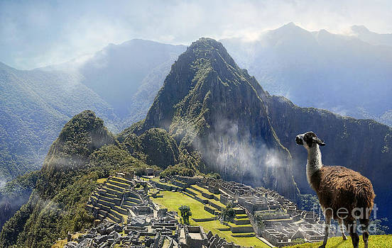 Machu Picchu by Paulo Sezio De Carvalho