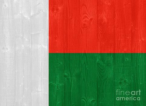 Madagascar flag by Luis Alvarenga