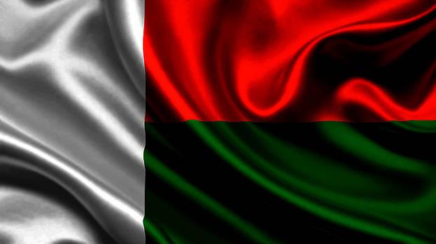 Valdecy RL - Madagascar Flag