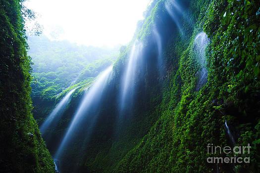 Madakaripura  Waterfall  East Java Indonesia  by Noppakun Wiropart