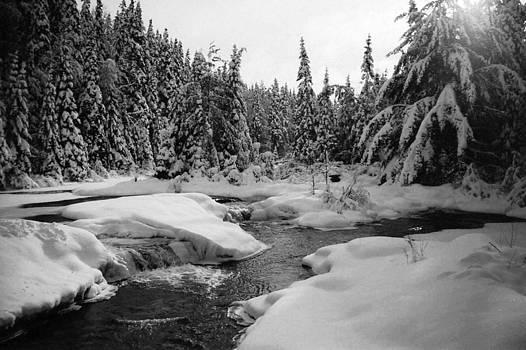 Madawaska River by David Porteus