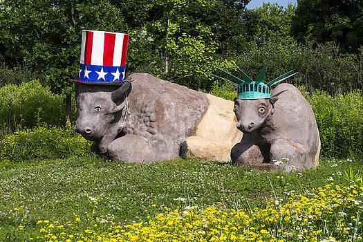 Steven Ralser - Madison - July 4 buffalo