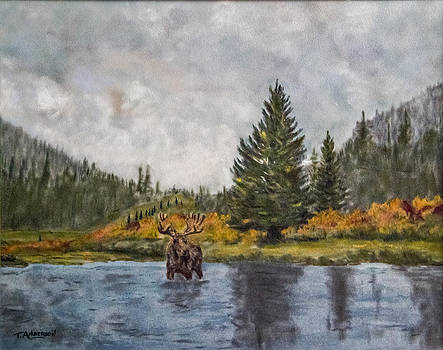 Madison River Moose by Terry Anderson