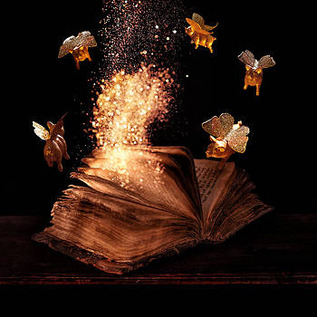 Magic book  by Floriana Barbu